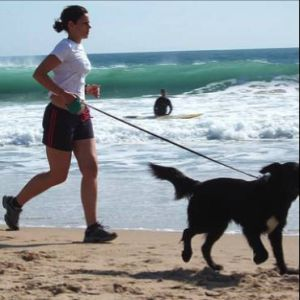 Getting in Shape with Your Dog